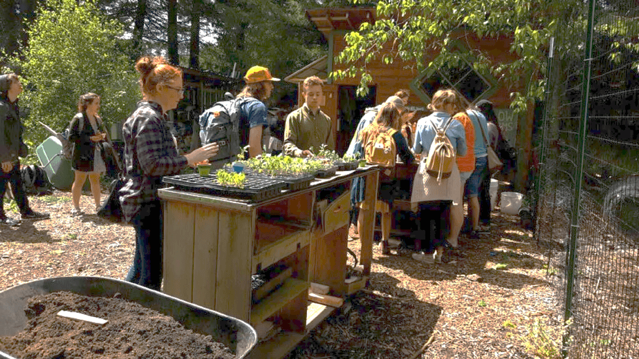Picture students standing at planting table
