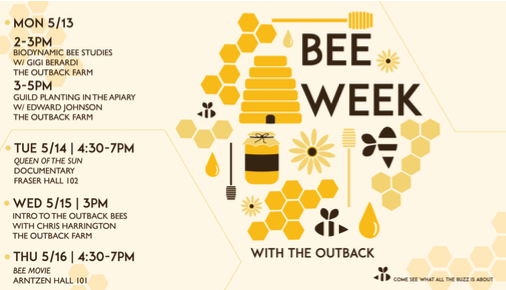 Bee Week with the outback