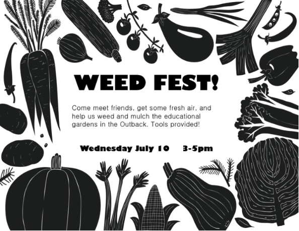 Weed Fest come help pull weeds in the outback